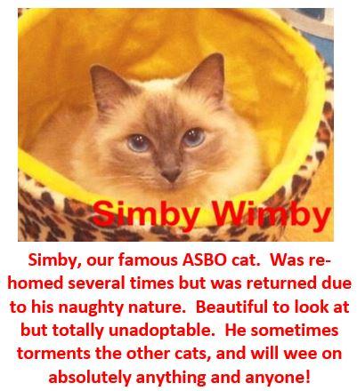 Simby Wimby